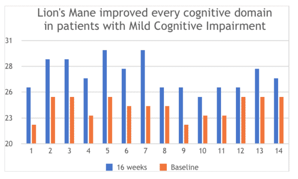 Lion's Mane improved every cognitive domain in patients with mild cognitive impairment